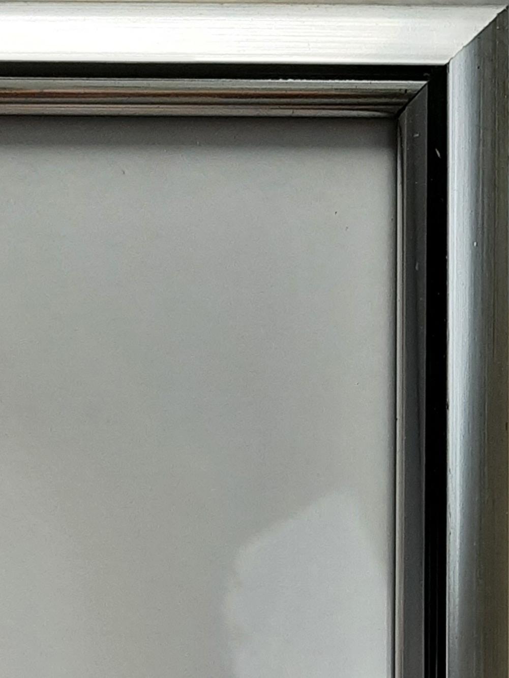 Posteraktie zilver